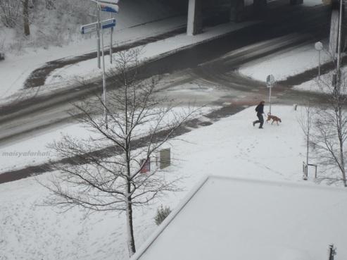 Main-main sama anjingnya